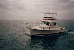 1987 Blue Seas 31