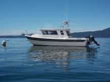 2014 Sea Sport Explorer 2400