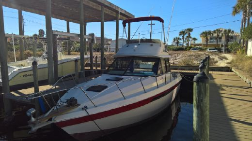 1982 Chris Craft 335 Commander