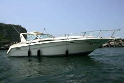 1992 Sea Ray Sea Ray 350 Sundancer