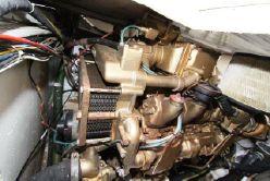 photo of  43' Baia 43 Force One