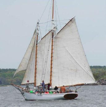 1933 Murray Peterson gaff-rigged Topsail Coasting Schooner