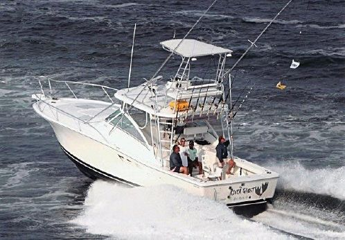 2002 Luhrs Express Carolina 360SX