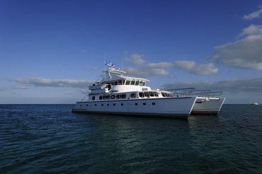2009 Custom Advance Marine Catamaran