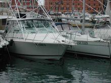 1999 Cabo Yachts 35 Express