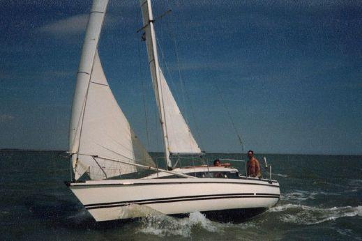 1978 Pegasus 800