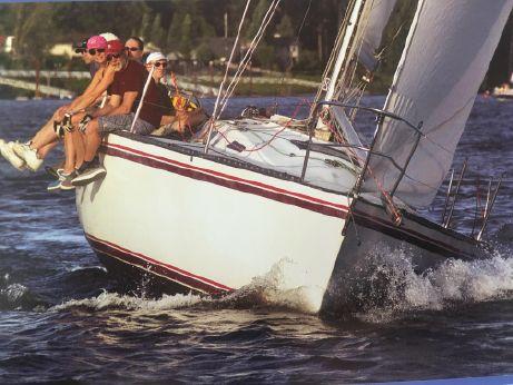 1984 Schock 35