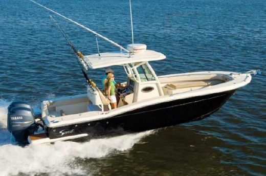 2010 Scout Boats 262 XSF