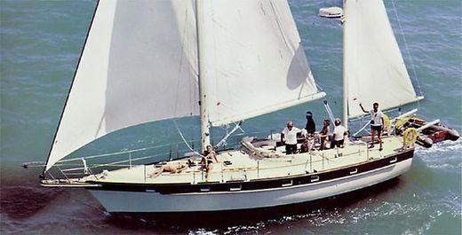 1984 Irwin 41