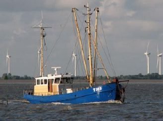 1956 Cutter, Work Ship Anchor net fishing