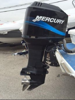 2002 Mercury Inflatables 225 EFI Saltwater