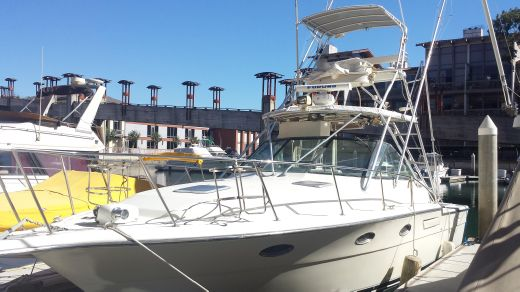 1991 Tiara 3300 Open w/ Tuna Tower