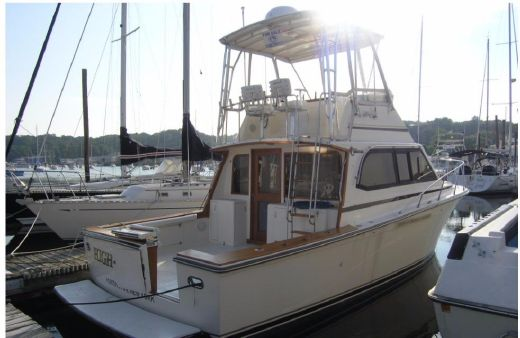 1989 Egg Harbor 35 Sport Fisherman