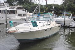 1979 Bayliner Conquest 32 Express