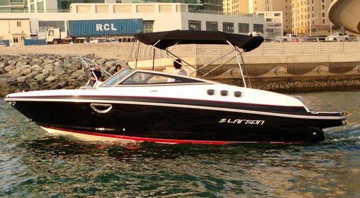 2013 Larson LXi 238