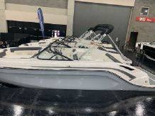 2020 Bayliner DX 2250
