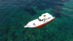 2017 Custom Sport Fishing Boat / Dive Boat