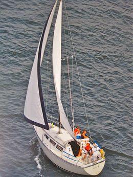 1981 S2 9.2 A