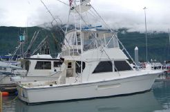 1995 Henriques Boat Works Convertible Sports Fisher