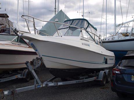 1999 Aquasport 225 Explorer