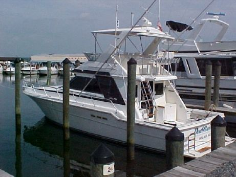 1988 Sea Ray 430 Convertible