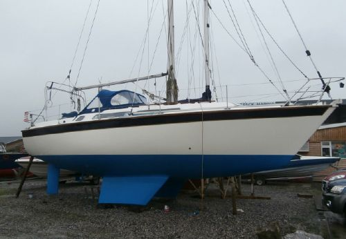 1985 Westerly Falcon 34