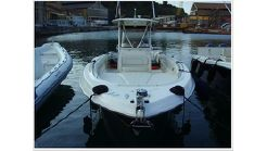 2007 Wellcraft Scarab 35