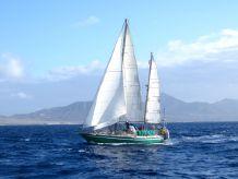 1983 Custom Caroff Galapagos 43