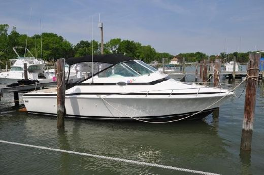 1987 Bertram Bahia Mar