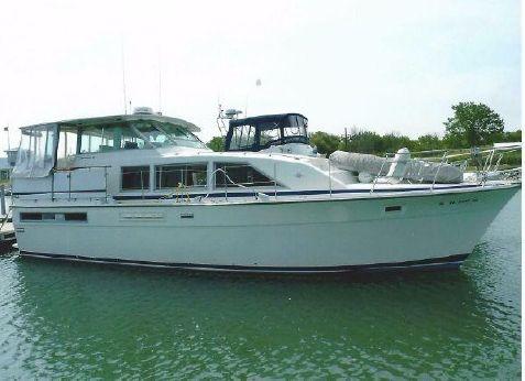 1983 Bertram 42 Motor Yacht