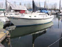 1984 Newport Mk II