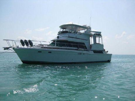 1990 Camargue Yacht-fish