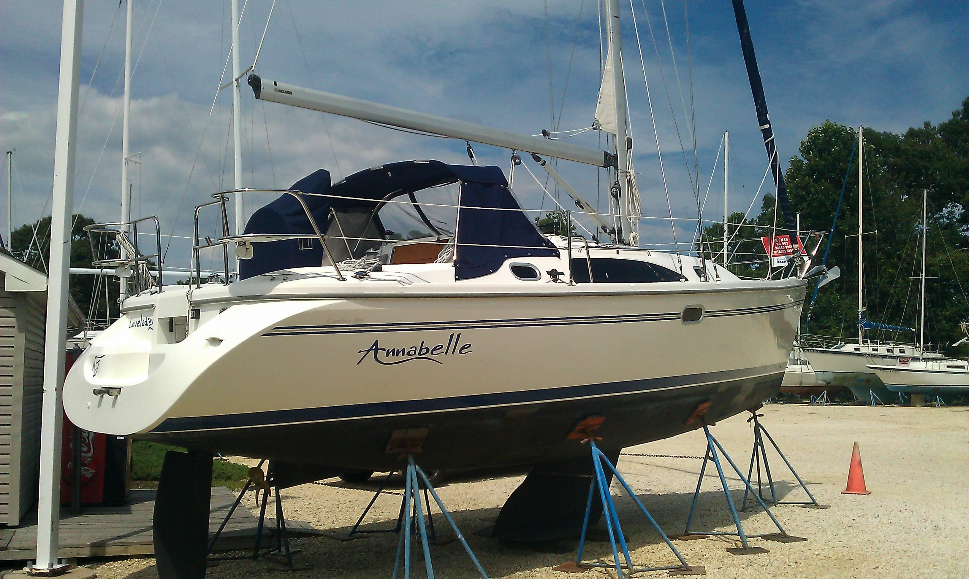 2010 Catalina 309 Sail Boat For Sale - www.yachtworld.com