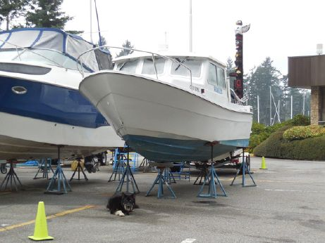1994 Seasport Sportsman 2200