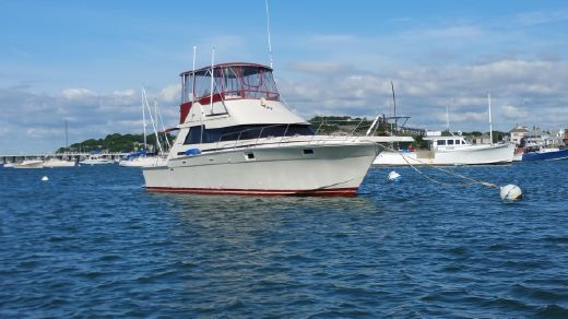 1987 Luhrs Convertible