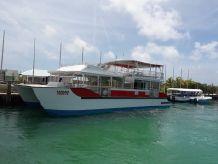 2019 Custom Catamaran