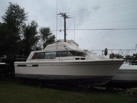 1980 Bayliner Bodega