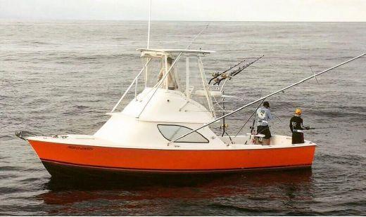 1978 Bertram 31 Sportfisher