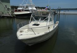photo of  Tiara Pursuit 25 Walkaround