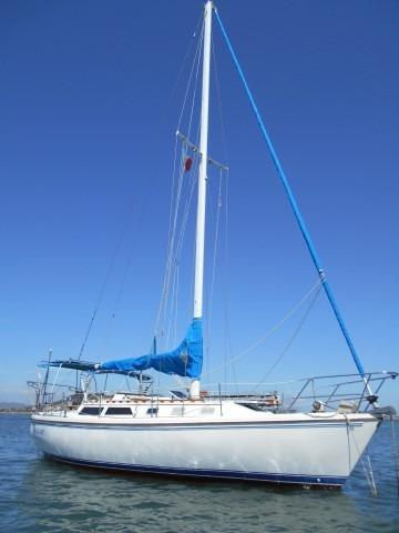 34' Catalina +Photo 5