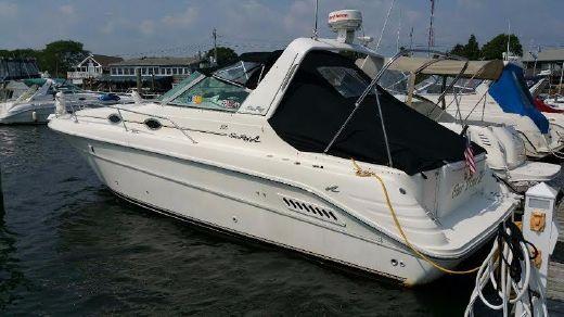1994 Sea Ray 300