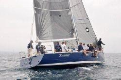 1996 Sydney 41
