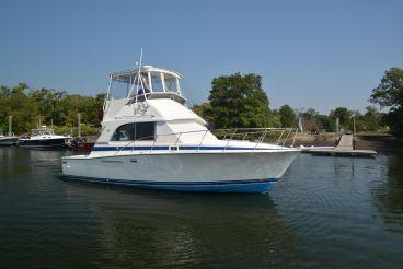 1985 Bertram 33 Flybridge Cruiser