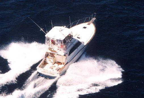 1982 Post Marine 42