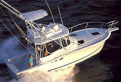 2000 Luhrs Tournament 320 Open