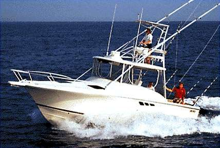 2000 Luhrs Tournament 290 Open