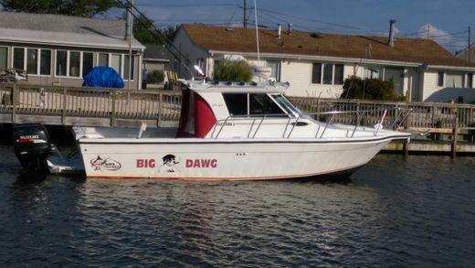 2007 Baha Cruisers 277 GLE