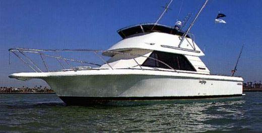 1996 Phoenix 29 SFX Convertible