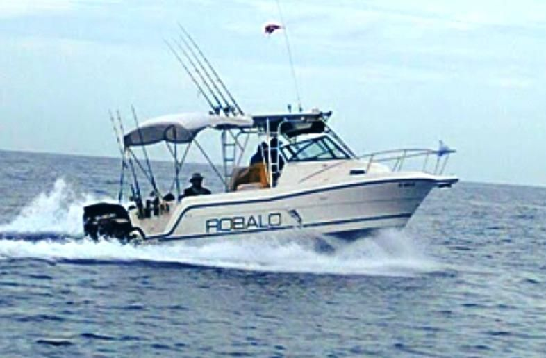 1994 robalo 2440 walkaround power boat for sale www for Robalo fish in english