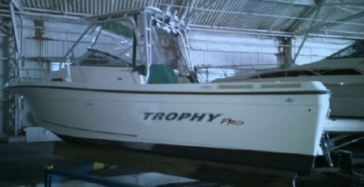 2004 Trophy 2352 Walkaround